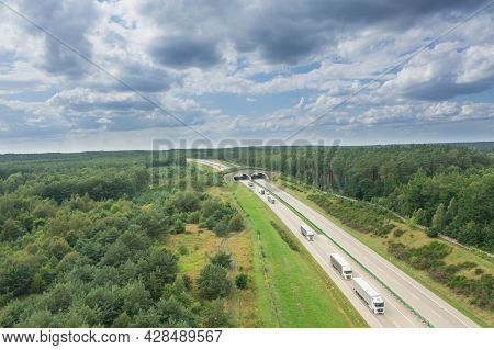 A Two-lane, Concrete Expressway Running Through Forest Areas. On Both Sides Of The Road There Are Wi