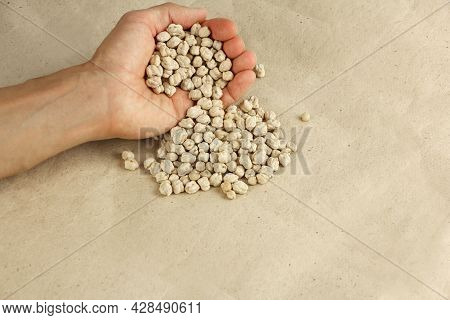 Hand Pours Dried Chickpeas On The Craft Paper, Chickpea Seeds Good Source Of Vegetable Protein For V