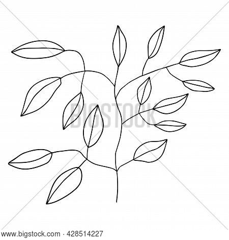 Cute Floral Doodle Element, Flower. Tree Branch. Plant Isolated On White Background.