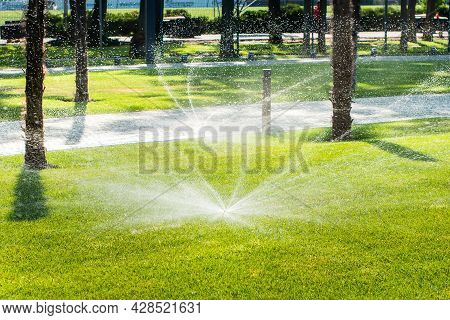 Automatic Sprinklers For Watering Grass. The Lawn Is Watered In Summer. Convenient For Home