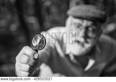 Magnifying Glass Selective Focus. Research And Discovery. Magnifying Power. Old Man Use Magnifying G