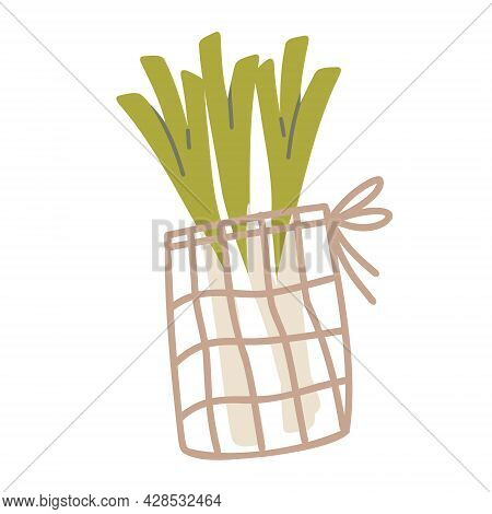 Sustainable Kitchen And Zero Waste Living Concept. Mesh Bag With Celery. Vector Cartoon Illustration