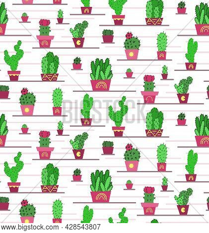 Pattern With Original Cartoon Green Cactuses In Pots On The Shelves And White Background. Hand Drawn