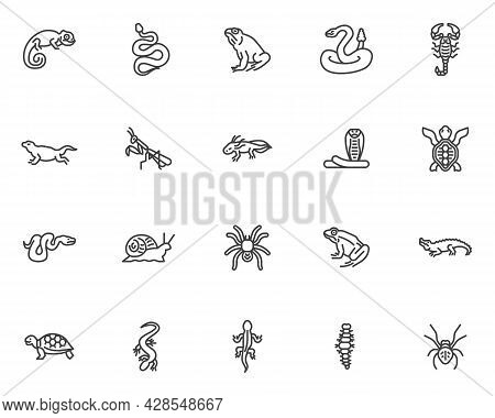 Reptiles And Amphibians Line Icons Set. Linear Style Symbols Collection, Outline Signs Pack. Reptile