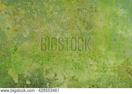 Abstract Green Background Lime Color, Vintage Grunge Background Texture Gradient Design, Website Tem