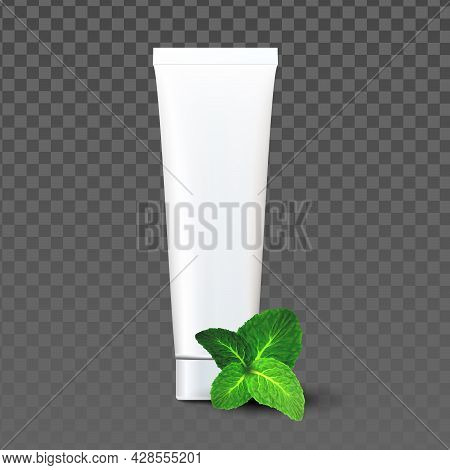 Toothpaste Blank Package With Mint Taste Vector. Mouth Tooth Brushing Toothpaste Packaging With Natu
