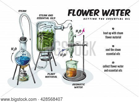 Process Production Of Essential Aromatic Oil And Flower Water In Chemistry Lab