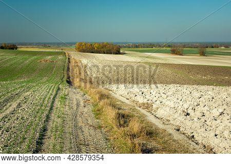 Dirt Road Through Hilly Farmland, Staw, Lubelskie, Poland