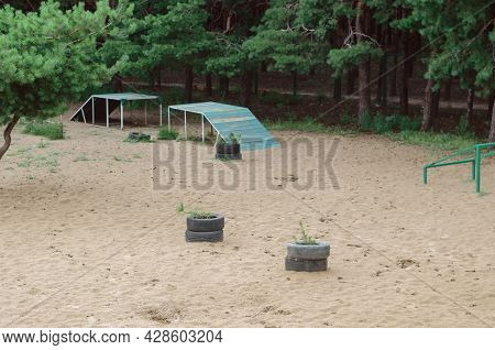 An Empty Dog Training Area With Sporting Equipment. Various Obstacles For Dog Agility. Pets. Active