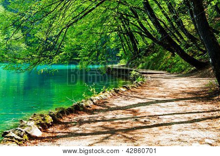 Path Near A Forest Lake In Plitvice Lakes National Park, Croatia