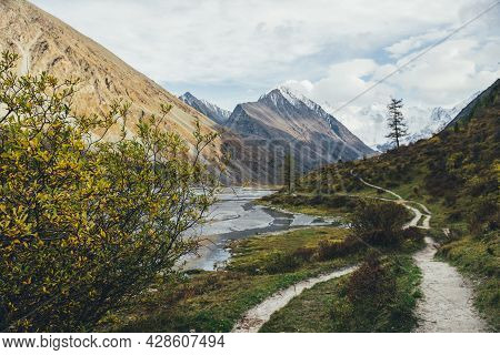 Scenic Autumn Landscape With Beautiful Shrub With Yellow Leaves In Mountain Valley With Water Stream