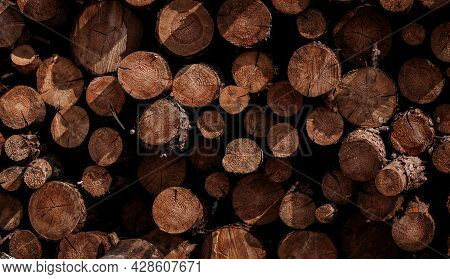 Pile Of Wooden Logs Stacked. Wall Of Stacked Wood Logs As Background. Stack Of Logs. Stack Of Firewo