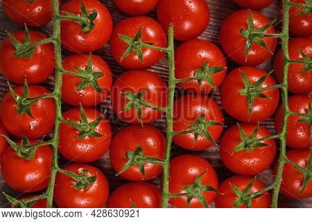 Trusses Of Small  Red Ripe Cherry Tomatoes