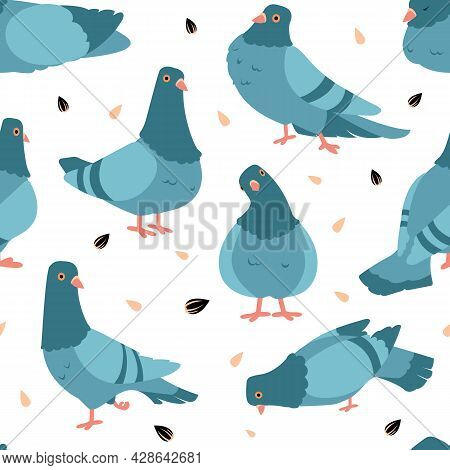 Pigeon Pattern. Cartoon Seamless Texture Of Wild City Birds. Flying Animals Flock And Seeds. Standin