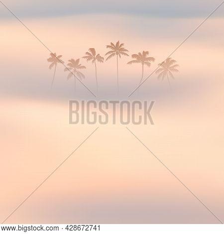 Palm Trees. Foggy Clouds. Fog Waves. Morning Mist. Natural Landscape