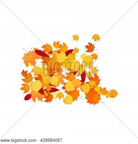 Pile Of Fallen Leaves. Heap Of Orange, Yellow And Red Autumn Leaves