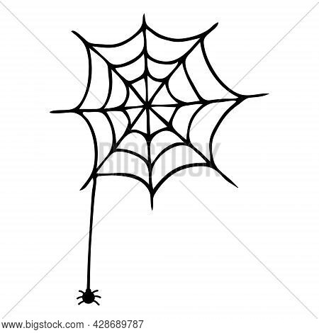 Single Vector Illustration Of A Spider Web And A Spider. Hand-drawn Doodle Spider Web, Halloween Ico