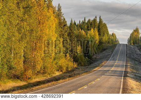Highway in beautiful autumn forest in rural Finland. Beautiful landscape with rural road and trees with colorful leaves. Ruska fall season in Finland
