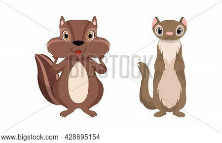 Cute Woodland Animals With Chipmunk And Stoat Vector Set