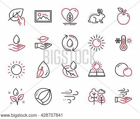 Vector Set Of Nature Icons Related To Local Grown, Wind Energy And Windy Weather Icons. Refill Water