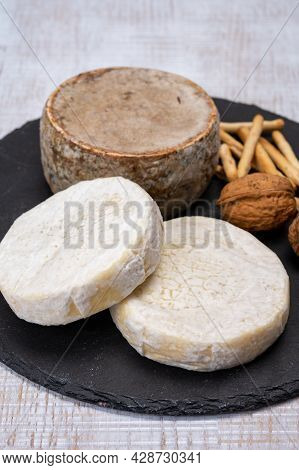 Cheese Collection, Fresh White Soft Cow Cheese With Mold From Swiss And Tommette De Savoie From Fran