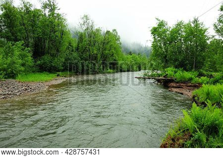 Winding Bed Of A Mountain River Flowing Through A Summer Forest After Rain.