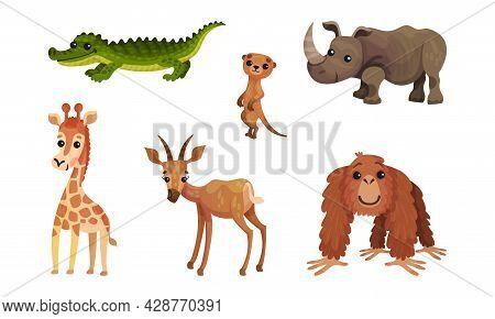 African Animals With Rhinoceros And Giraffe Vector Set
