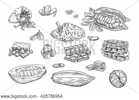 Chocolate Elements Hand Drawn Vector Illustration Collection. Engraved Cocoa Beans Or Butter And Dar