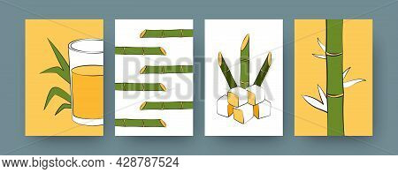 Collection Of Contemporary Posters With Sugarcane Plants. Sugar Cane Cubes, Glass Of Juice Cartoon V