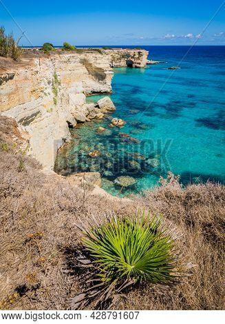 Torre Sant Andrea Near Torre Dellorso, Salento Sea Coast, Apulia, Italy. Beautiful Rocky Coast With