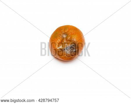 One Rotten, Half-decomposed, Blackened, Moldy, Limp Fruit On A White Background. The Concept Of Expi