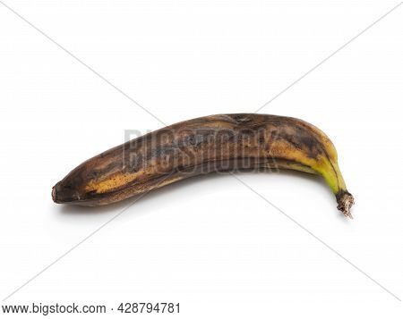 One Rotten, Half-decomposed, Blackened, Moldy Fruit On A White Background. The Concept Of Expired Fo