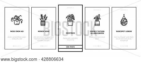Houseplant Store Sale Onboarding Mobile App Page Screen Vector. Potting Houseplant And Cactus, Leave