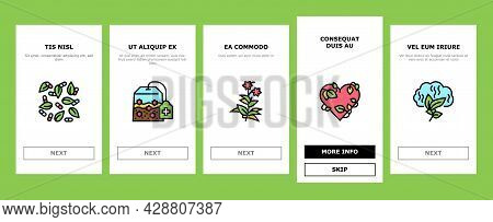 Phytotherapy Treat Onboarding Mobile App Page Screen Vector. Phytotherapy Medicaments From Flowers A