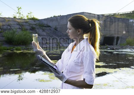 A Female Ecologist Takes Water Samples For Contamination, The Concept Of Ecology.