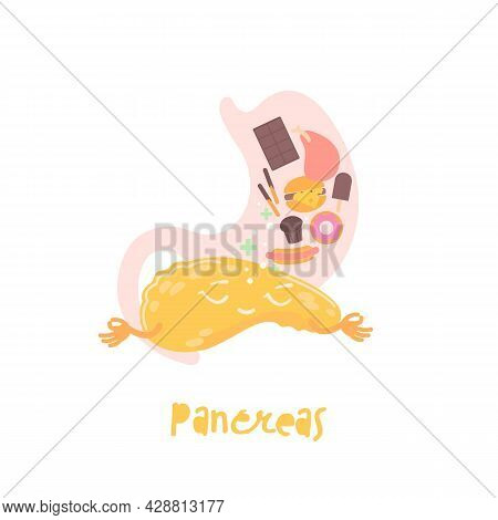 Healthy Pancreas. Cartoon Character. Healthcare, Anatomy, Pancreatitis, Transplantation Image.
