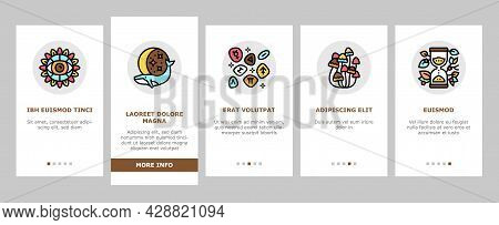 Boho Style Decoration Onboarding Mobile App Page Screen Vector. Butterfly And Insect, Dreamcatcher A