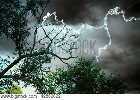 Dark Cloudy Sky With Lightning Striking Trees. Thunderstorm