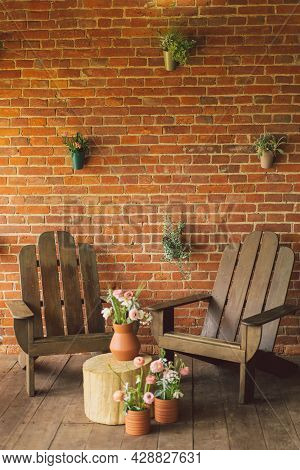 Ranunculus Flowers In Clay Pots On The Terrace. Two Wooden Chairs On The Terrace With A Beautiful Br