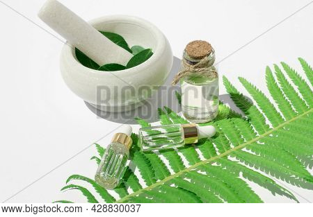 Essential Oil Made From Natural Ingredients. Bottles With Essential Oils, Fern Leaf And Mortar With