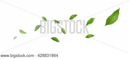 Green Floating Leaves, Air Purifier Atmosphere Simple Main Picture