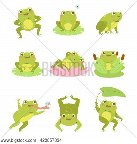 Cute Frogs. Lotus Flowers And Funny Cartoon Toad Character, Different Poses Aquatic Reptile, Wild Fa
