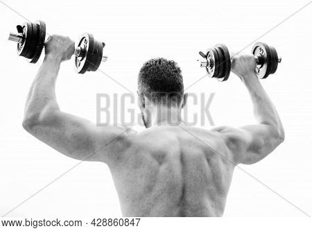 Full Of Energy. Man Sportsman Weightlifting. Steroids. Fitness And Sport Equipment. Muscular Back Ma