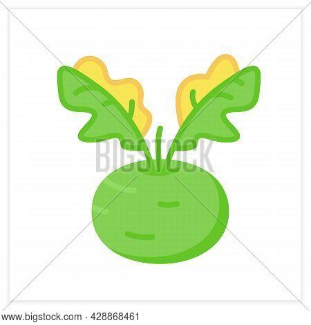 Kohlrabi Flat Icon. Superfood. Organic Healthy Energetic Food For Balanced Nutrition. Detox And Weig