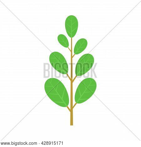 Leafy Green Icon. Flat Illustration Of Leafy Green Vector Icon Isolated On White Background