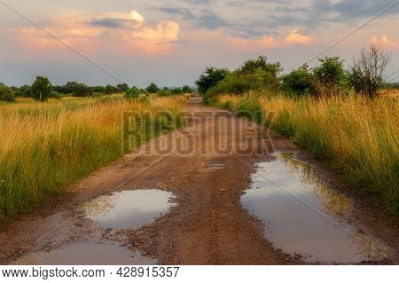 Beautiful Summer Road And Sunny Weather. Summer Landscape