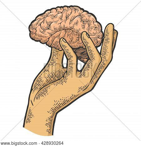 Human Brain In Hand Sketch Engraving Vector Illustration. T-shirt Apparel Print Design. Scratch Boar