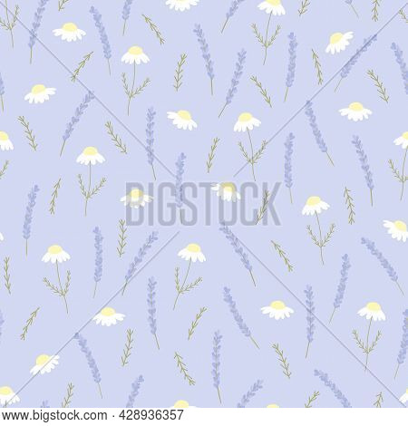 Vector Seamless Pattern With Chamomile And Lavender On Violet Backdrop. For Decoration, Invitation B