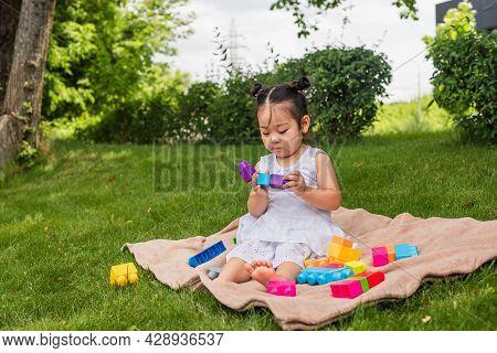 Asian Toddler Girl In Dress Playing Building Blocks On Picnic Blanket In Park