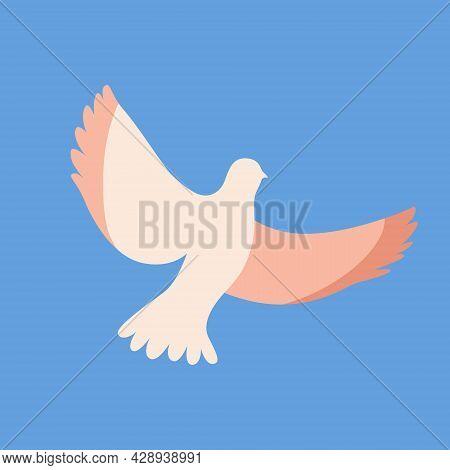 White Dove Bird Flat Vector Illustration. Flying Beautiful Pigeon Animal Isolated On Blue Background